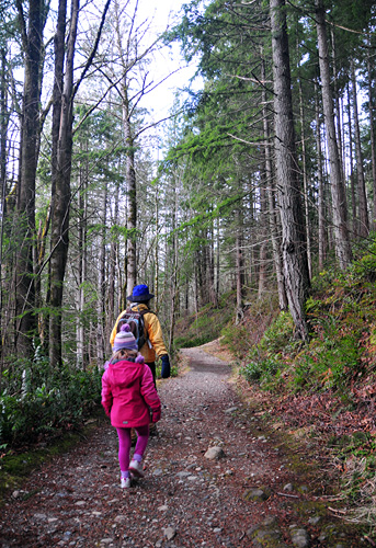Hiking High School Trail at Tiger Mountain in Issaquah