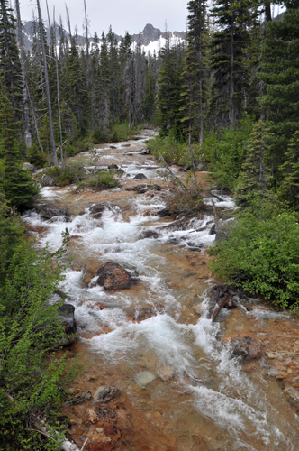 Cutthroat Creek along Cutthroat Lake Trail in Okanogan-Wenatchee National Forest