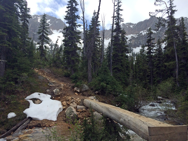 Cutthroat Lake Trail log bridge in Okanogan-Wenatchee National Forest