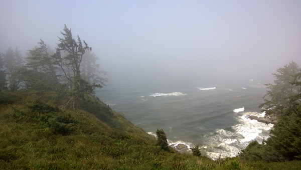 Bell's View Trail viewpoint in Cape Disappointment State Park