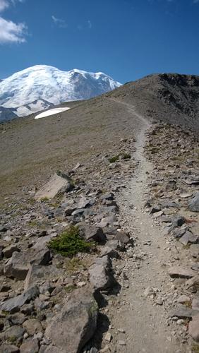 Burroughs Mountain Trail in Mt Rainier National Park
