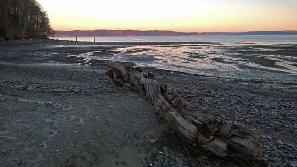 Dumas Bay Wildlife Sanctuary sunrise at Puget Sound beach