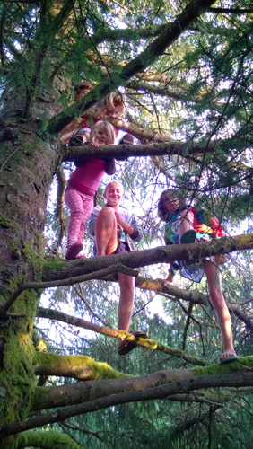 Kids climbing tree at Cape Disappointment State Park campground