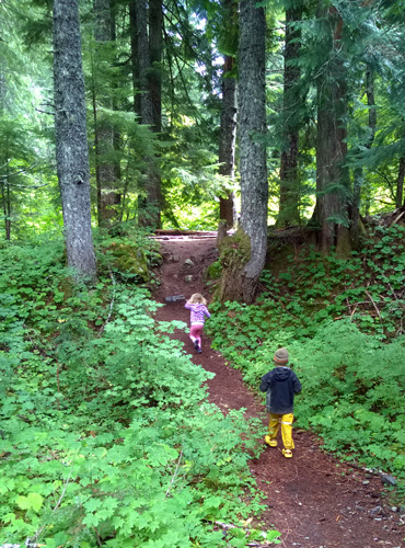 Kids running up Wonderland Trail to Maple Creek Camp in Mount Rainier National Park