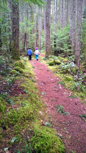 Kids hiking Boulder Garden Loop trail near North Bend