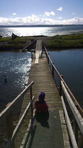 Footbridge by Carlson Cove in Andrew Anderson Marine Park on Anderson Island