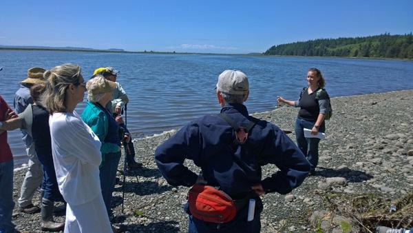 Lake hancock in greenbank on whidbey island for Whidbey island fishing