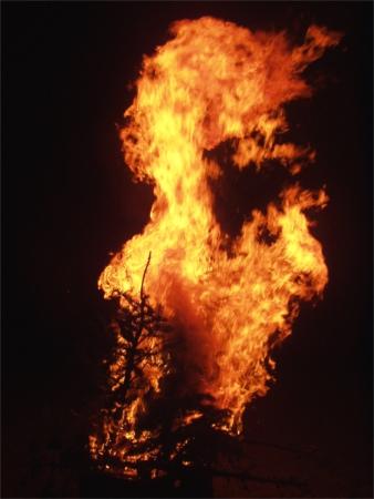 burning christmas tree 2 at golden gardens beach seattle