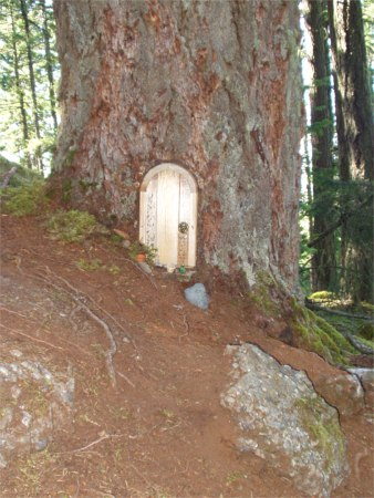 Gnome Door In Tree On Trail Up To Top Of Mt. Erskine Salt Spring & Salt Spring Island And Mt. St. Helens |