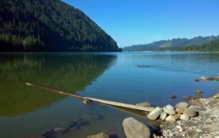 Yale Lake Beaver Bay Campground Cougar Washington Mt St Helens