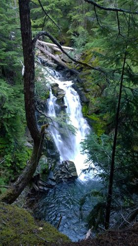 Carter Falls waterfall on Paradise River along Wonderland Trail in Mt Rainier National Park