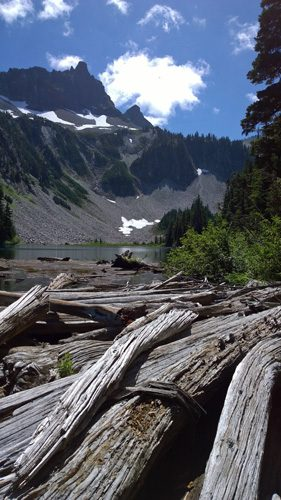 Snow Lake and weathered logs from trail in Mt Rainier National Park
