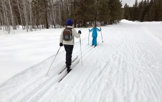 Cross-country skiing Plain Valley Nordic Ski Trails Beaver Creek Trail