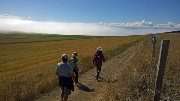 Hikers walking on Ebey's Prairie Trail in Coupeville on Whidbey Island