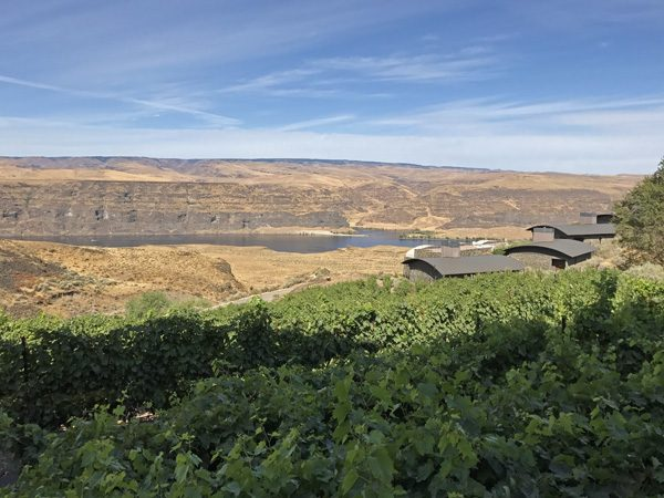 Cave B Winery and Resort rental Cliffehouses in vineyards view to Columbia River Gorge