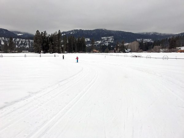Cross-country skiers on Plain Valley Nordic Ski Trails