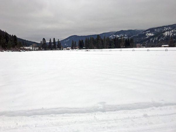 Plain Valley Nordic Ski Trails on open farm land