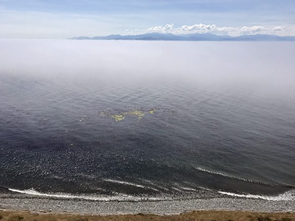 Fog over Puget Sound from Fort Ebey State Park Bluff Trail