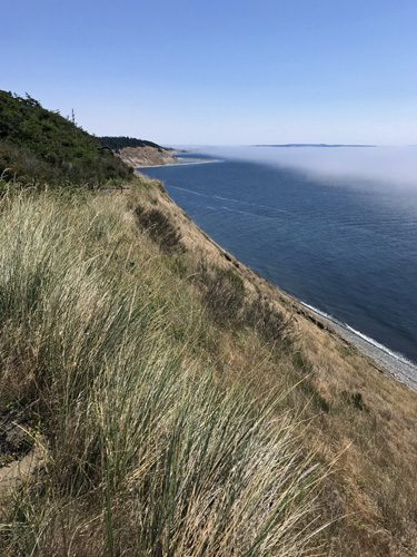 View south from Fort Ebey State Park Bluff Trail with fog over Puget Sound